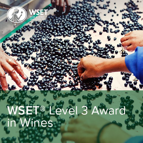 WSET level 3 Award in Wines